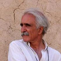 Mohammad Reza ASLANI