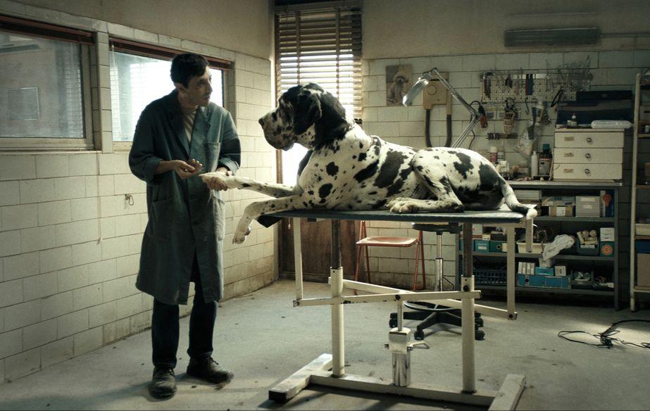 Film still of Dogman
