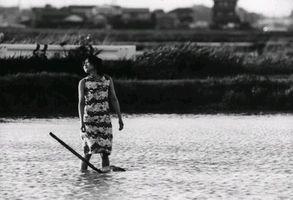 HITOKOROSHI NO ANA