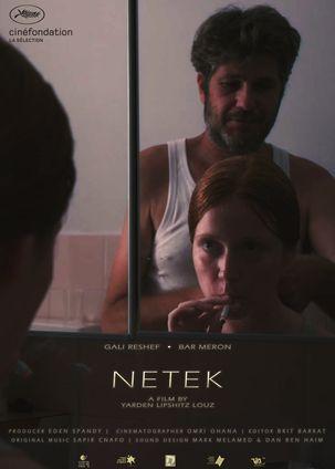 NETEK