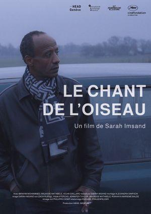 LE CHANT DE L'OISEAU