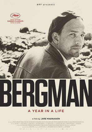 BERGMAN - A YEAR IN A LIFE