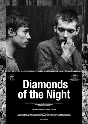 LES DIAMANTS DE LA NUIT
