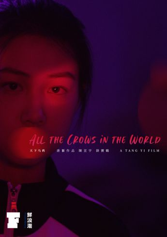 ALL THE CROWS IN THE WORLD