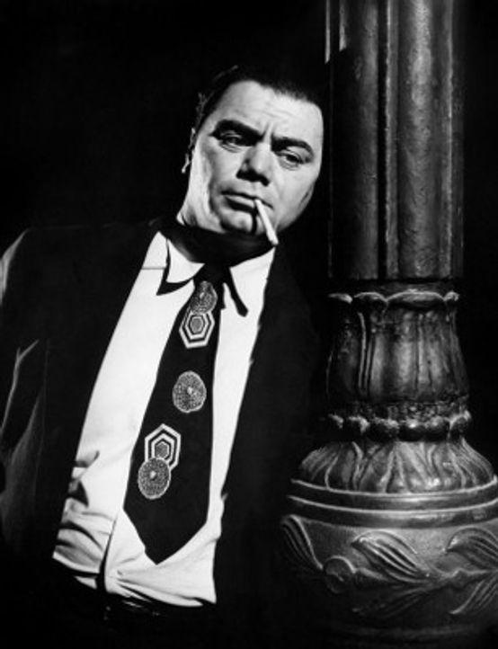 Ernest Borgnine在Delbert Mann执导的《君子好逑》中