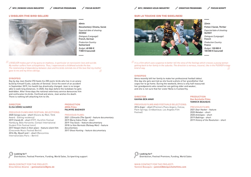 Focus SCRIPT 2021 - THE BIRD-SELLER | ON THE SIDELINES