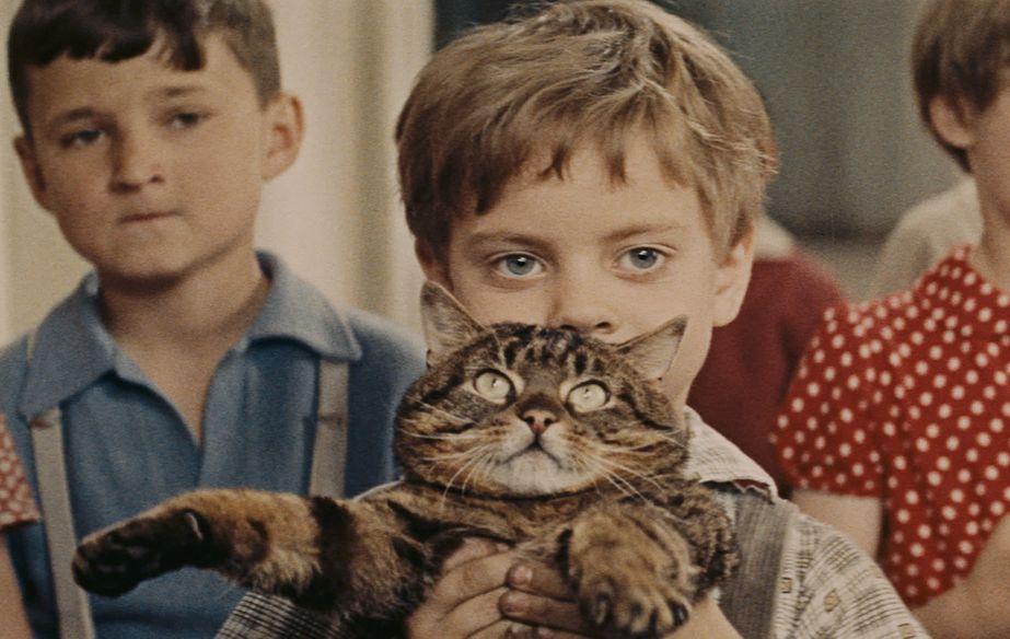 Photo du film Až Přijde Kocour (Un jour un chat)